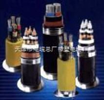 DJYVP1*3*0.75三对计算机通讯电缆(质高价廉)