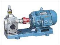 YCB0.6-0.6不锈钢圆弧泵