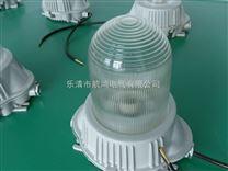 GC101-N110防水防尘防震防眩泛光灯GC101-N110