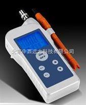M2013 便攜式溶解氧分析儀  CN60M/M2013