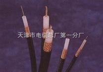 阻燃型計算機通信電纜ZR-DJYPVP