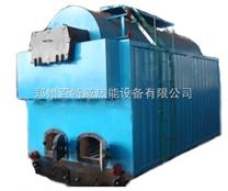 1吨燃煤锅炉