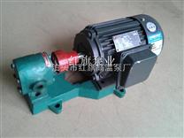 CB-B齿轮泵,供应华潮CB-B各型号齿轮泵