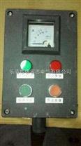 FZC-S-A2D2K1G两钮两灯一开关挂式操作柱,厂家可定制非标防爆箱