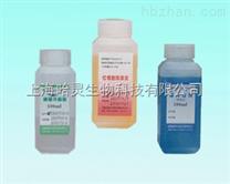 现货促销:巴氏染色液试剂盒(EA36)价格