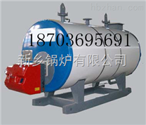 《4吨燃气锅炉》