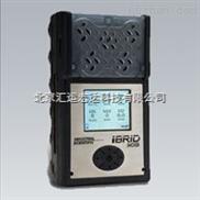 MX6--英思科多气体检测仪