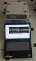 RT-WL1A大体积混凝土无线测温仪