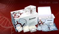 人凋亡诱导因子(AIF)ELISA试剂盒,48T/96T