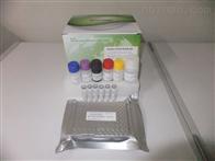 人可溶性肿瘤坏死因子α受体(sTNFαR)ELISA试剂盒,48T/96T