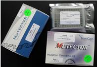 大鼠成纤维细胞生长因子10检测试剂盒
