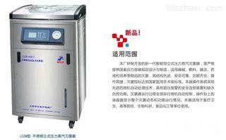 翻盖式高压蒸汽灭菌锅上海申安LDZM-40KCS-III