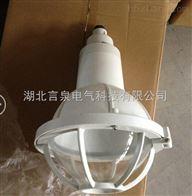 增安型BGL-S-L70g吊式防爆防腐灯