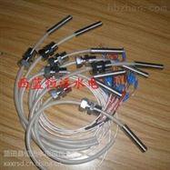 前导轴承径向瓦测温WZP-200铂热电阻批发