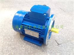 Ms132M-2中研紫光电机
