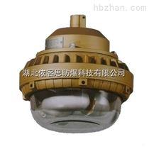 SBD1110-YQL50W立杆式节能防爆灯