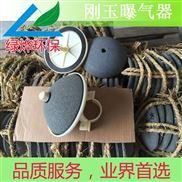 TCBQLY-178陶瓷剛玉曝氣器
