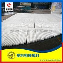 聚丙烯塑料格栅填料生产厂家