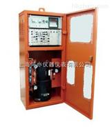 BH1325型放射性气体γ连续监测仪