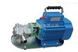 温州品牌WCB手提式齿轮油泵1