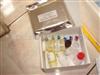 骨成型蛋白4(BMP-4)免疫组化试剂盒