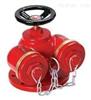 SQD用式地上消防水泵接合器