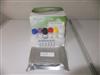 小鼠水通道蛋白4检测试剂盒
